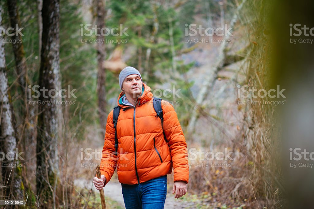 One young man hiking and orienteering in forest. Austria, Styria stock photo