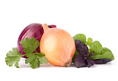 Onion and aroma herb leaves still life