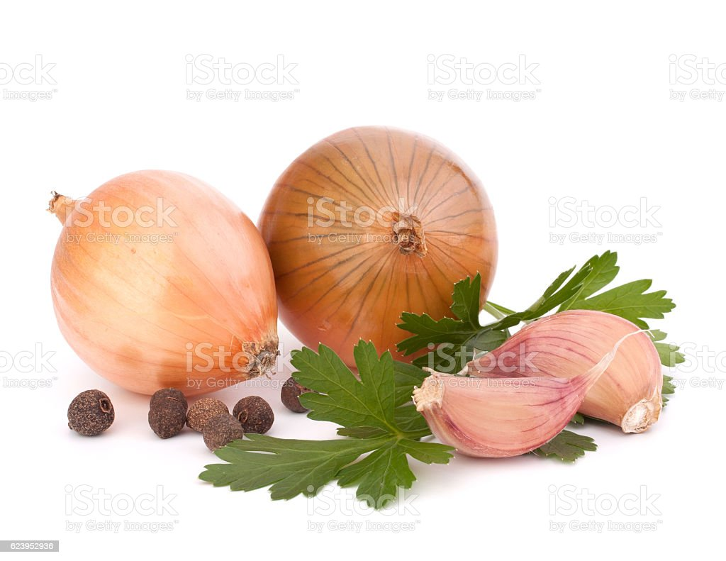 Onion and garlic clove stock photo