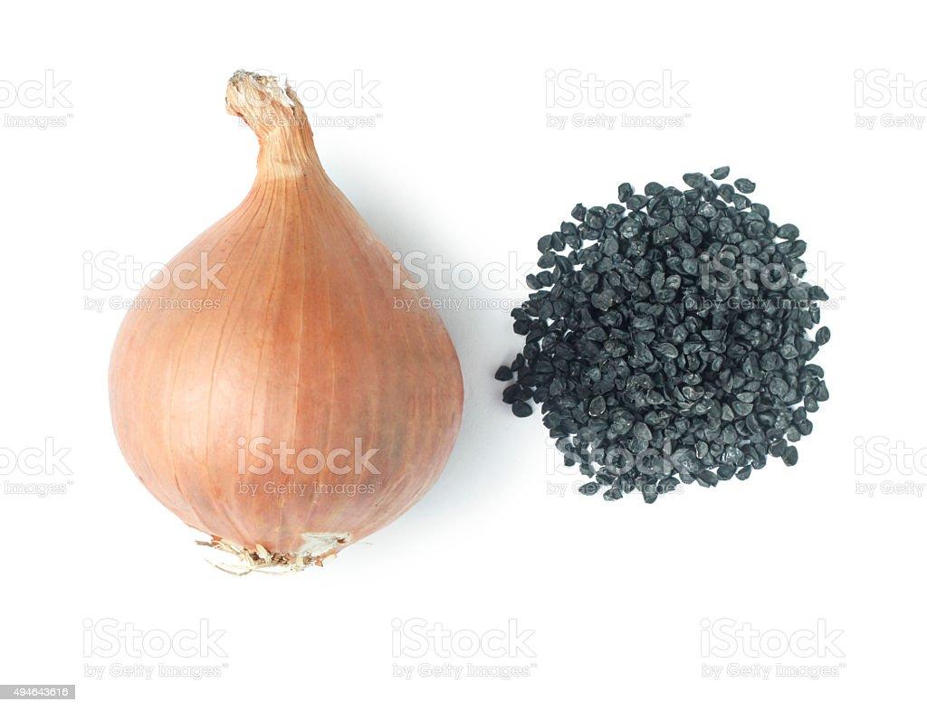 Onion and Onion Seeds stock photo