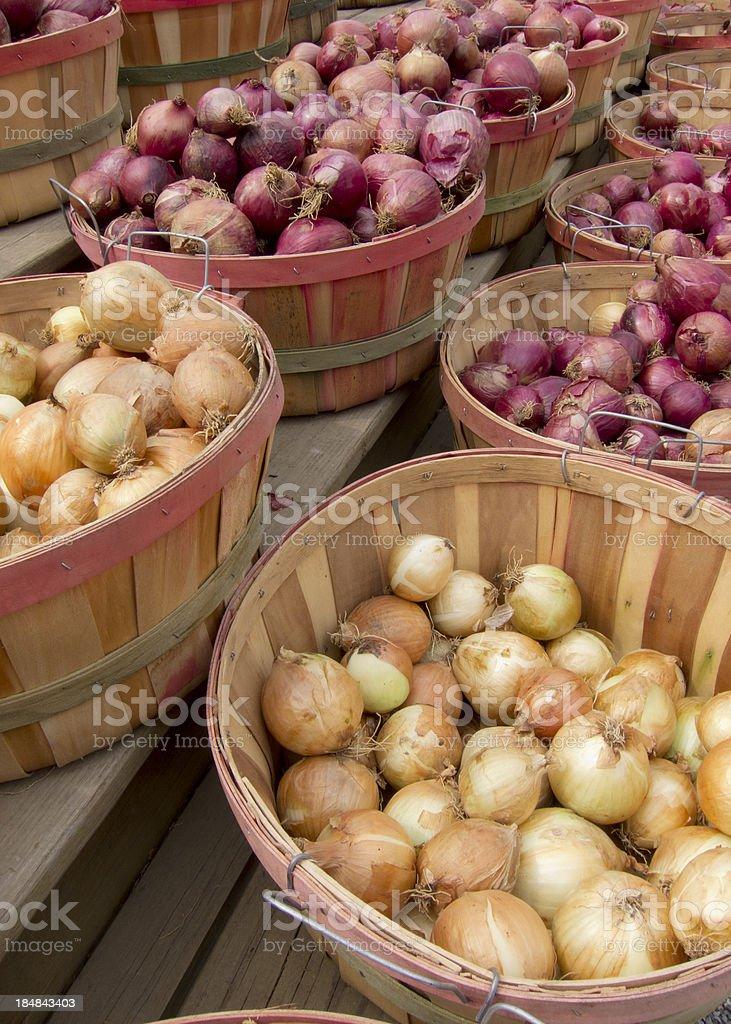 Onion Bushels stock photo