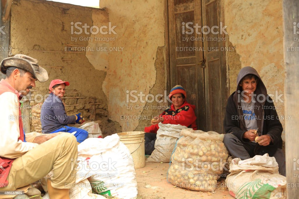 Onion Farm Family Workers stock photo