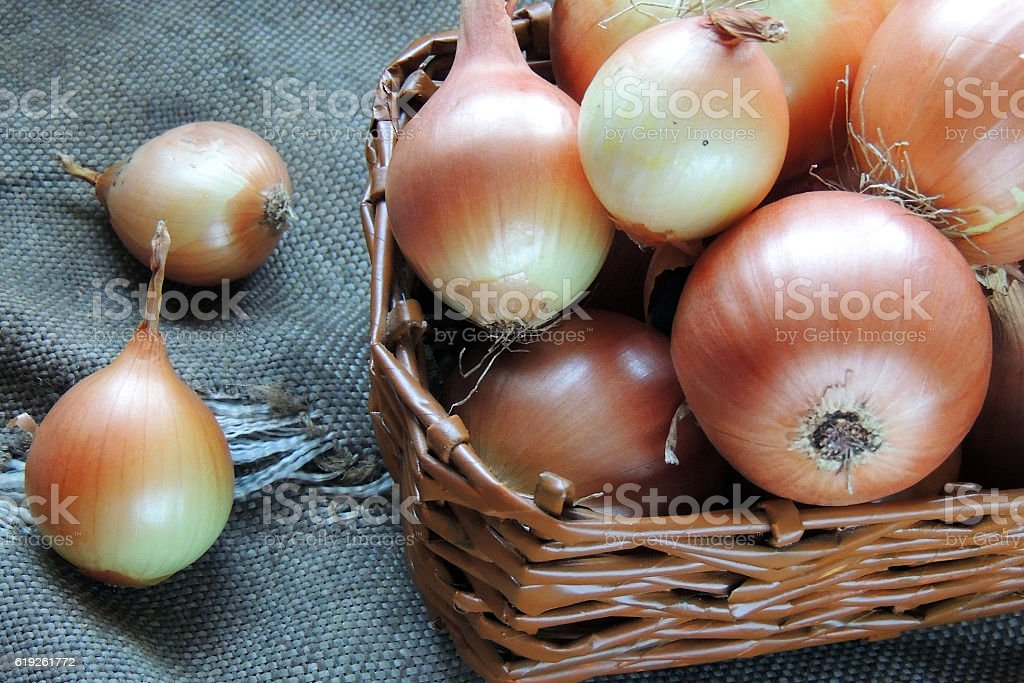 Onion in a basket stock photo