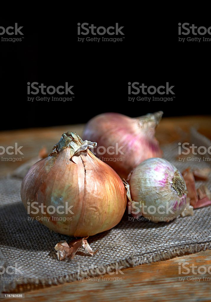 Onion royalty-free stock photo