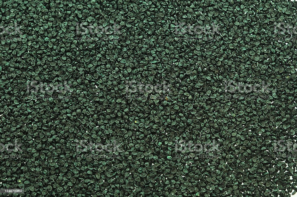 Onion Seed royalty-free stock photo