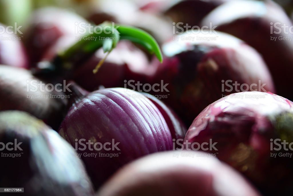 Onions at the Farmers Market stock photo