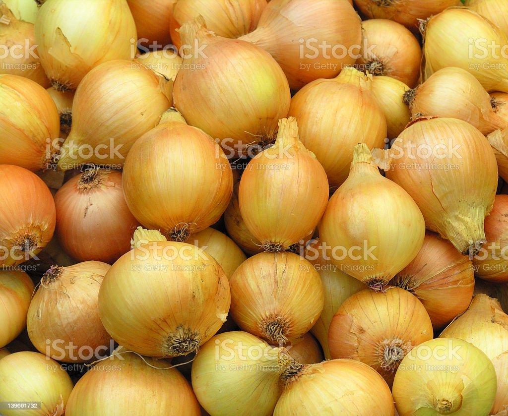 Onions stock photo