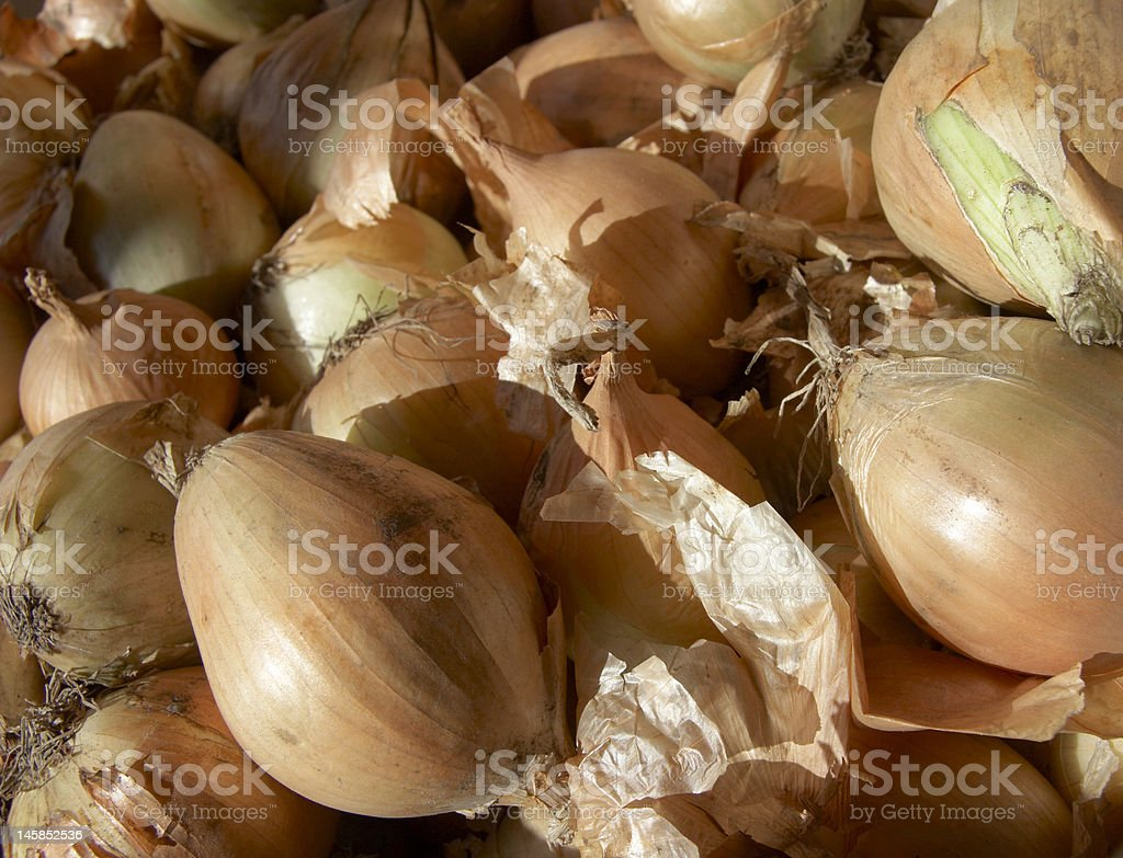 Onions - vegetable background stock photo