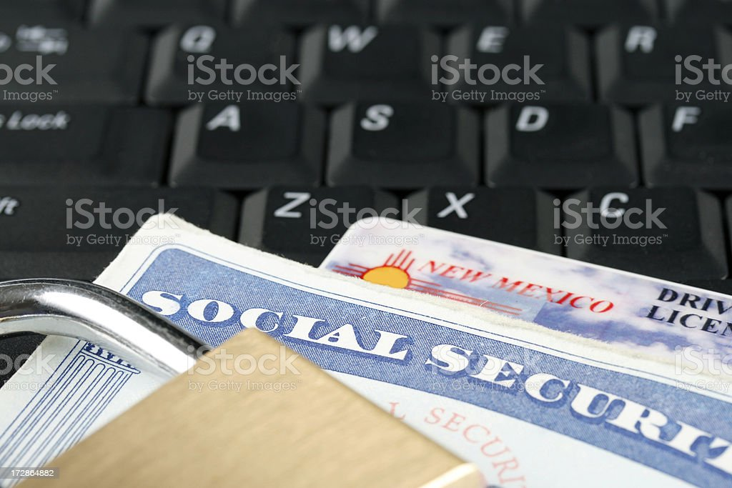 Online Security royalty-free stock photo
