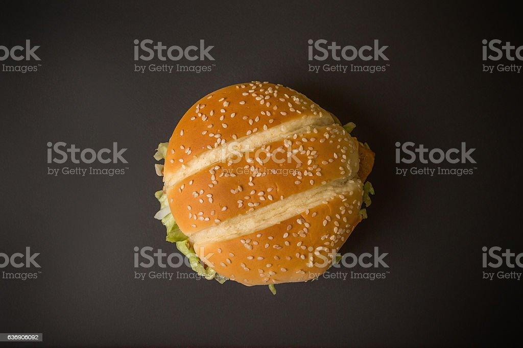 only one hamburger stock photo