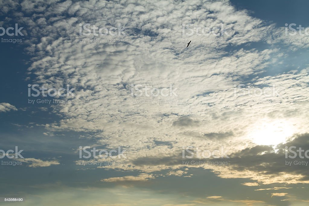 Only sky. Beautiful white clouds in the blue sky. stock photo