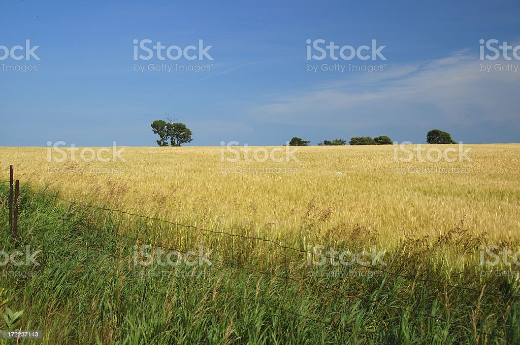 Ontario countryside summer scenic stock photo