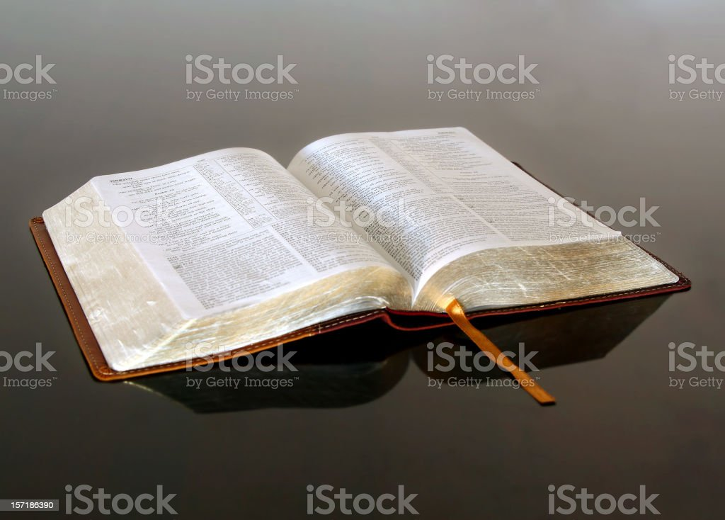Open Bible royalty-free stock photo