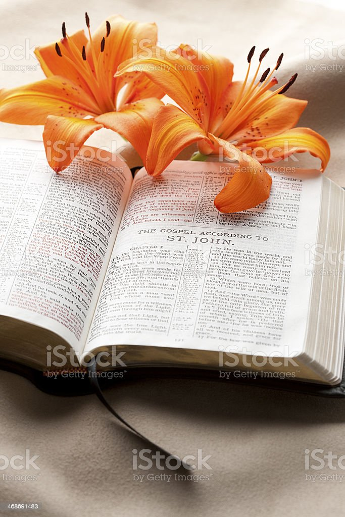 Open Bible with Orange Lilies - Gospel of John KJV stock photo