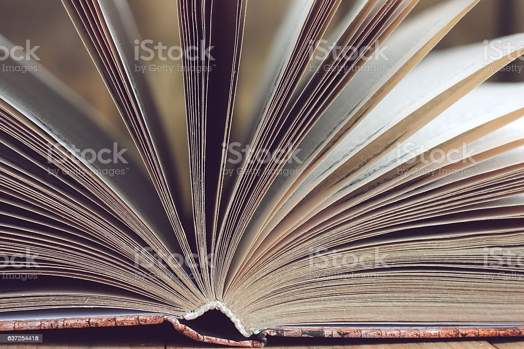 Open book closeup. stock photo