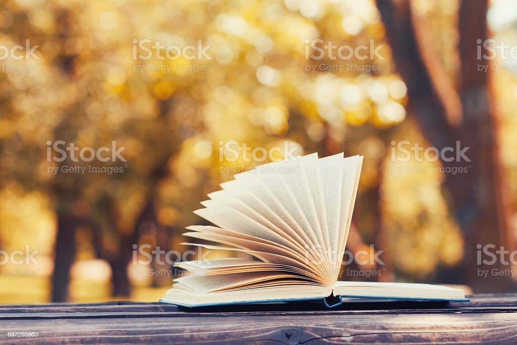 Open book on bench in autumn park. Reading, education concept. stock photo