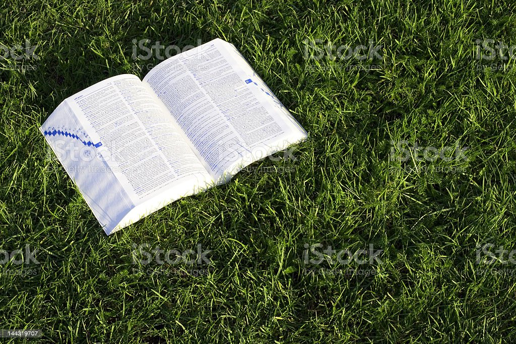 Open book on green grass 2 royalty-free stock photo
