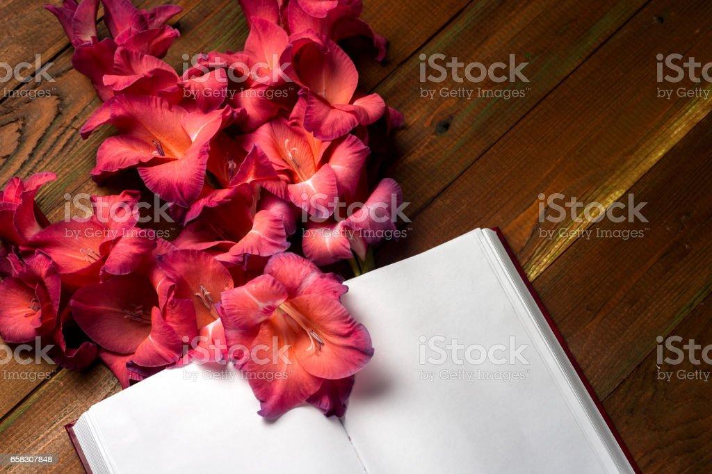 Open book on light table. stock photo