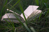 open book on the green grass,