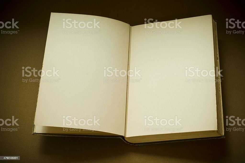 Open Book with Blank Pages royalty-free stock photo