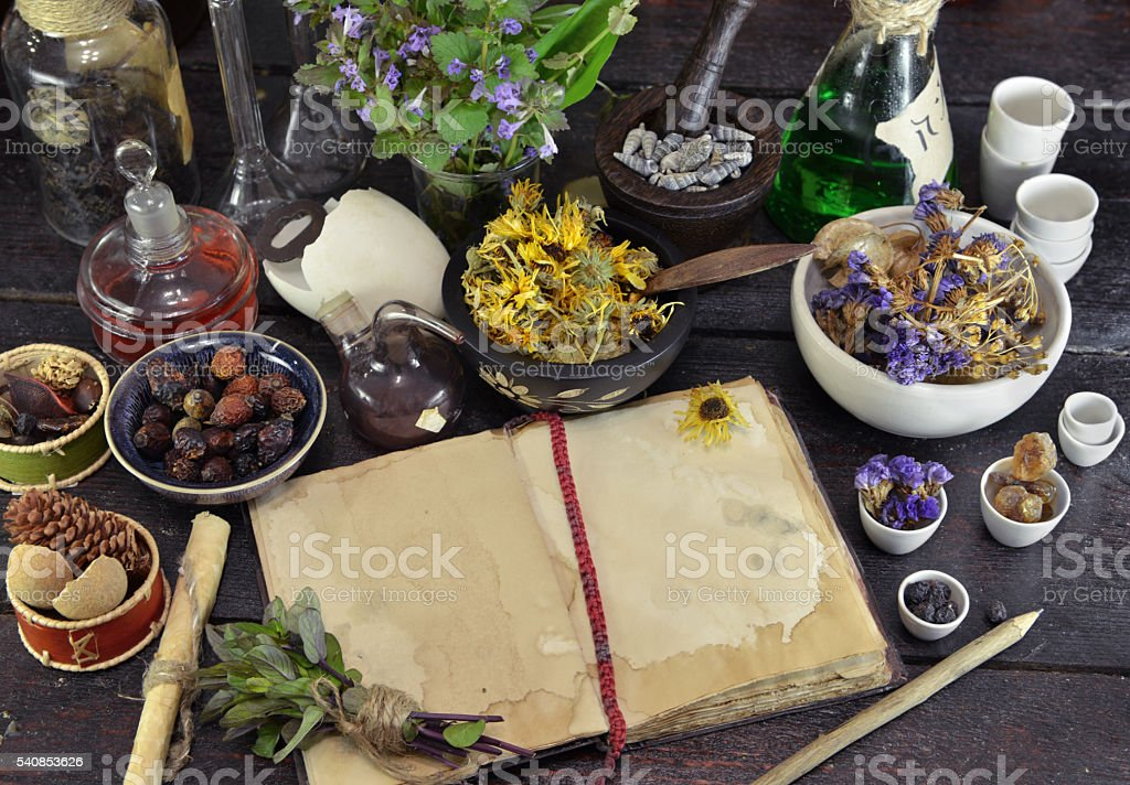 Open book with herbs, berries and flowers on witch table stock photo