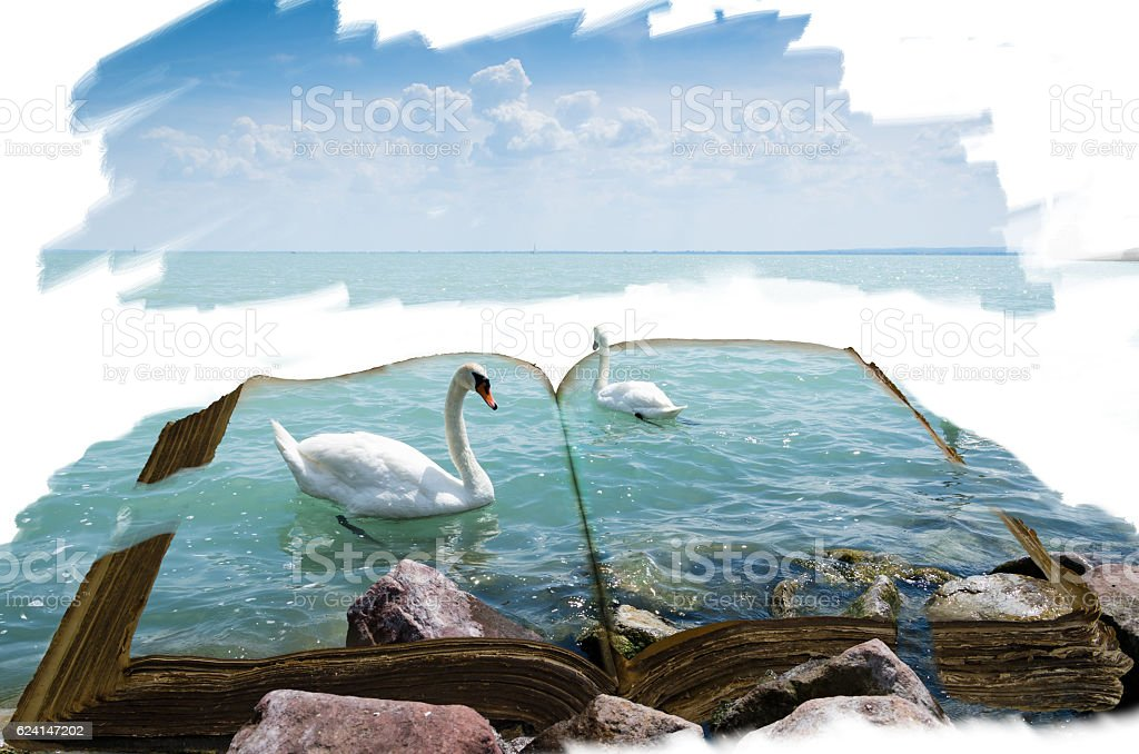 open book with swan vector art illustration