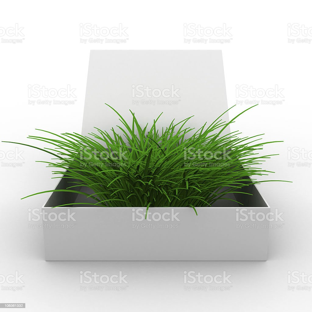 Open box with grass. Isolated 3D image royalty-free stock photo