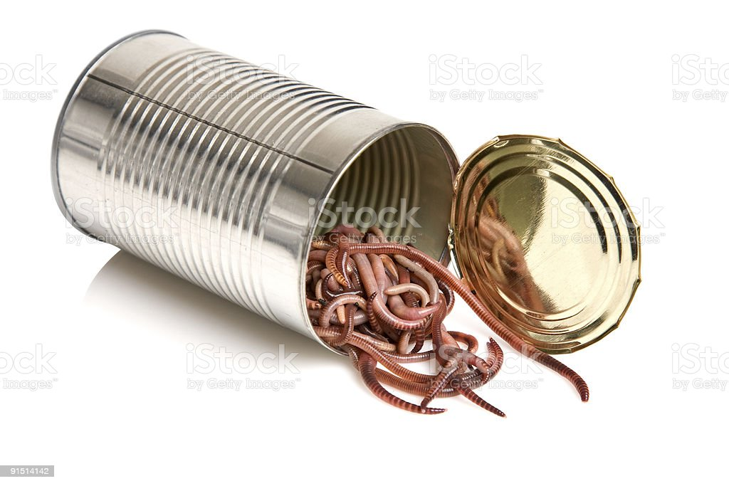 Open can of worms royalty-free stock photo