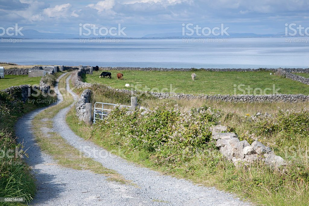 Open Countryside near Kilronan on Inishmore, Aran Islands stock photo