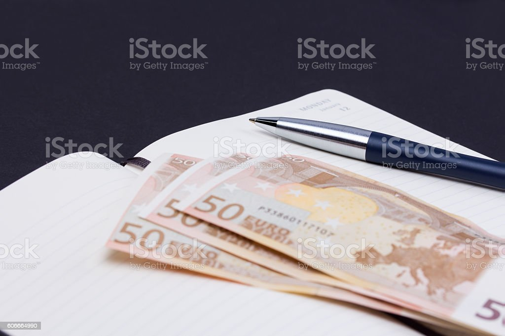 Open daily planner with luxury ball pen and some euro stock photo