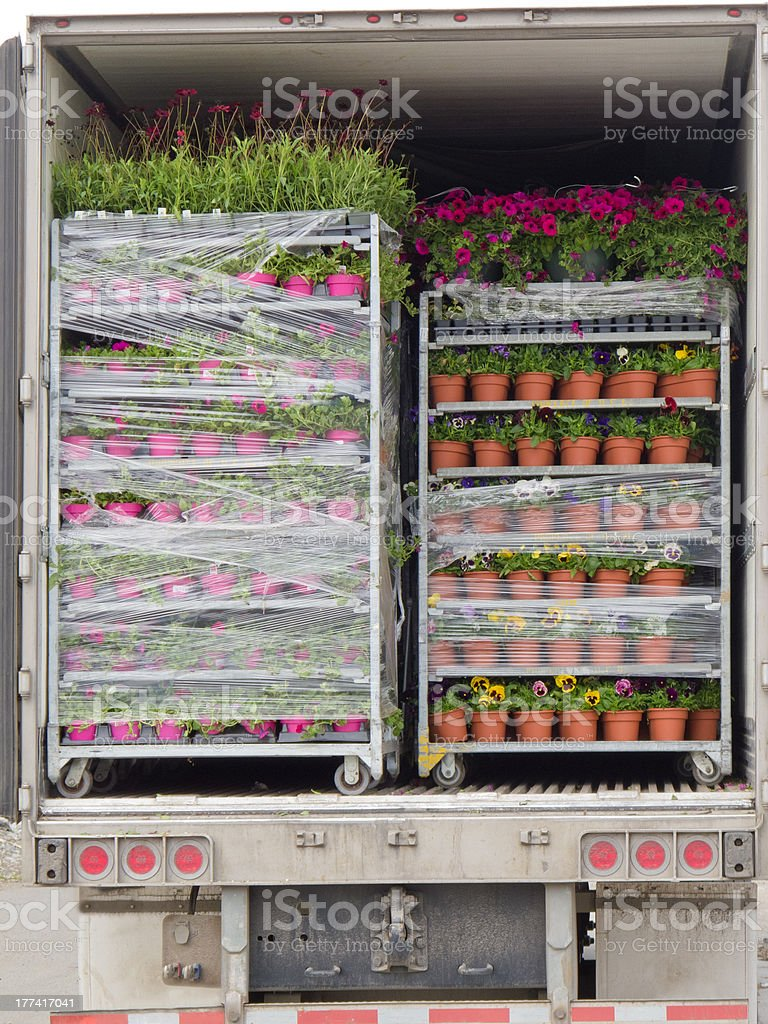 Open delivery truck loaded with pot plants pallets royalty-free stock photo