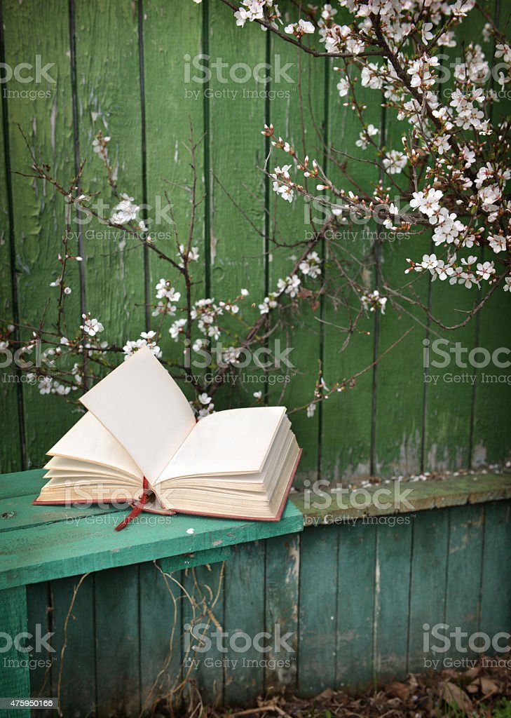 Open diary on wooden bench with cherry tree stock photo