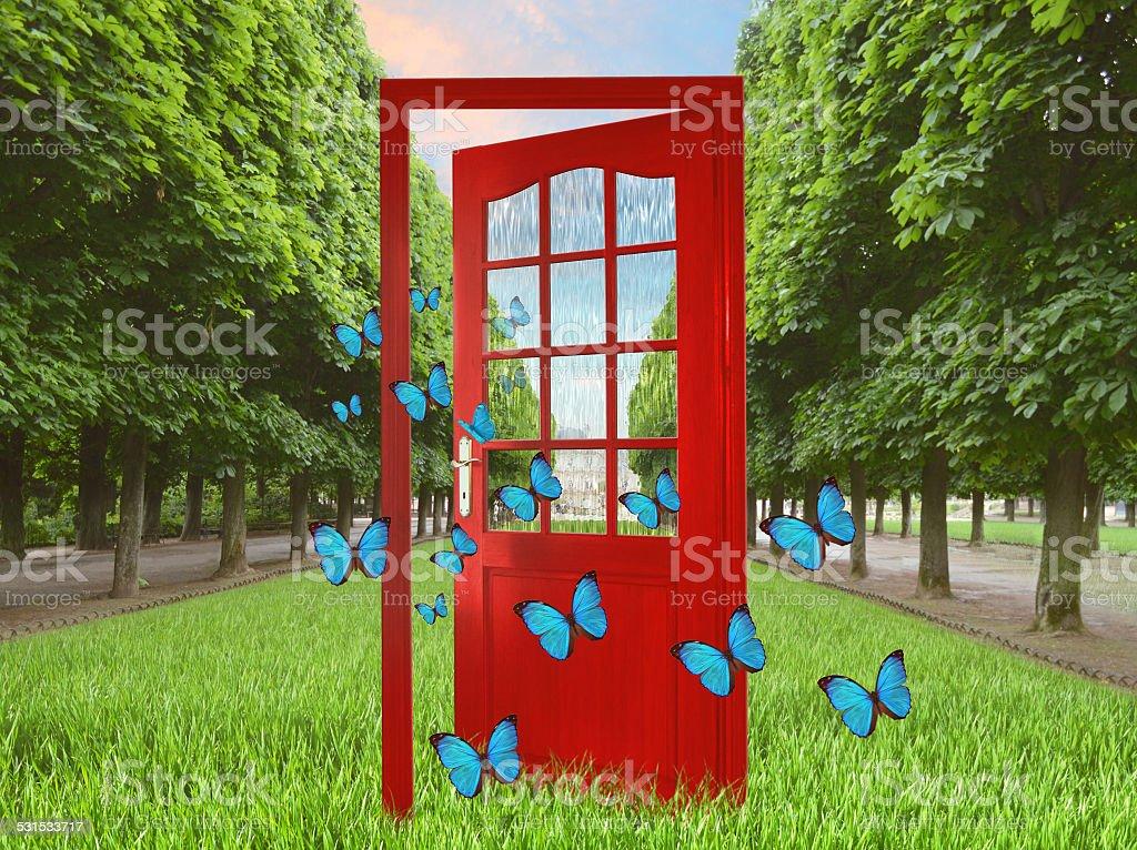 Open door in green garden and flying butterflies stock photo