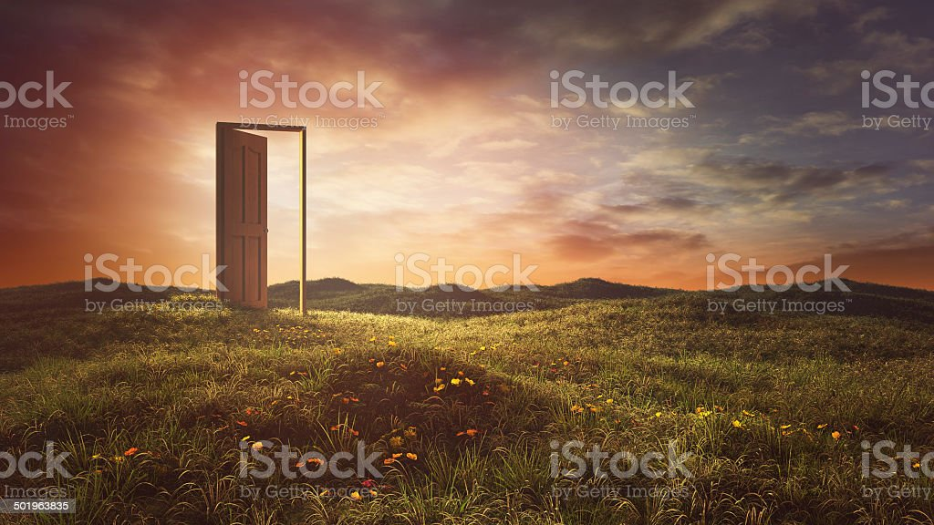 Open doors on the summer meadow stock photo