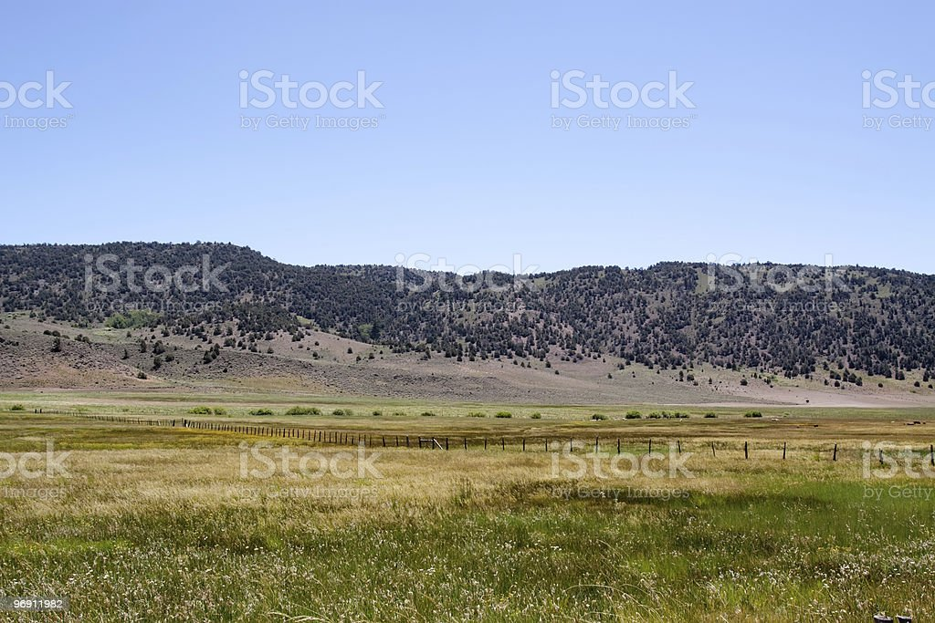 Open field by Sierra Nevadas stock photo