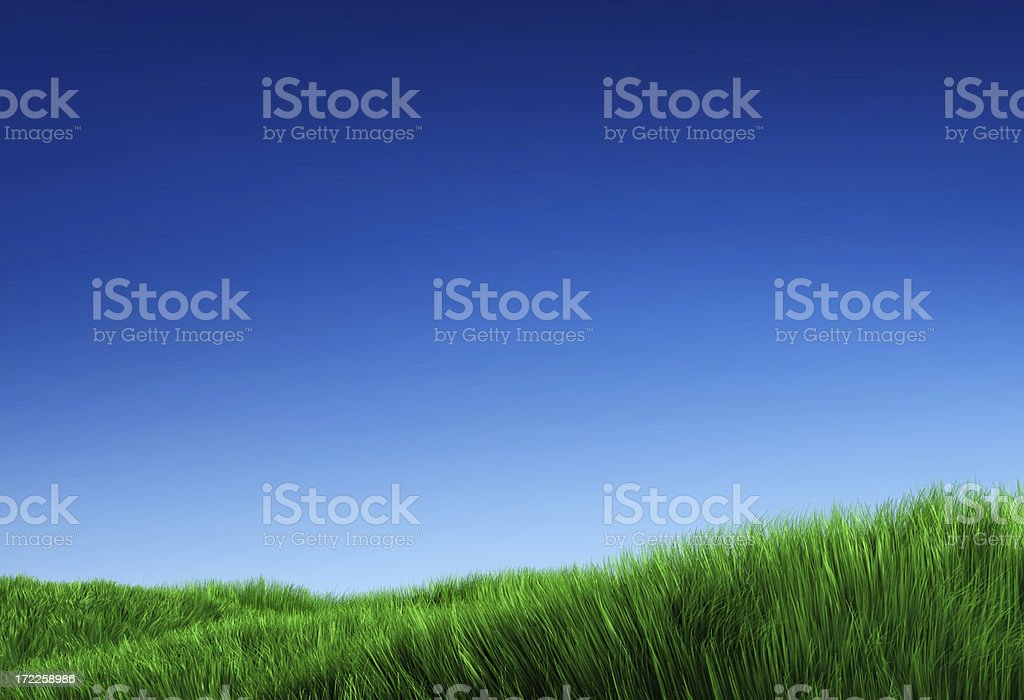 Open Field (XXL) stock photo