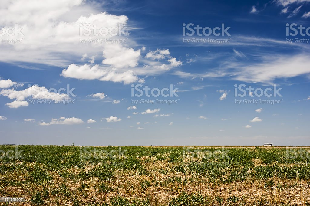 Offener Feld Lizenzfreies stock-foto