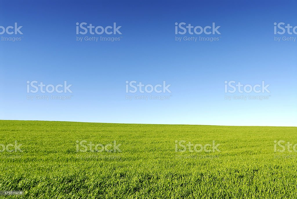 Open Field Vignette stock photo
