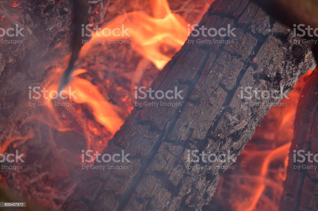 Open fire with flames and burnt wood. stock photo