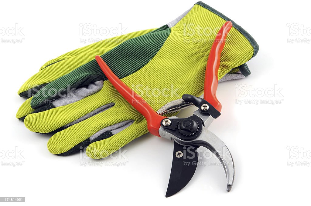 open Gardening shears and Gloves royalty-free stock photo