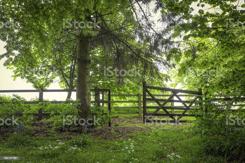 open gate in English countryside royalty-free stock photo