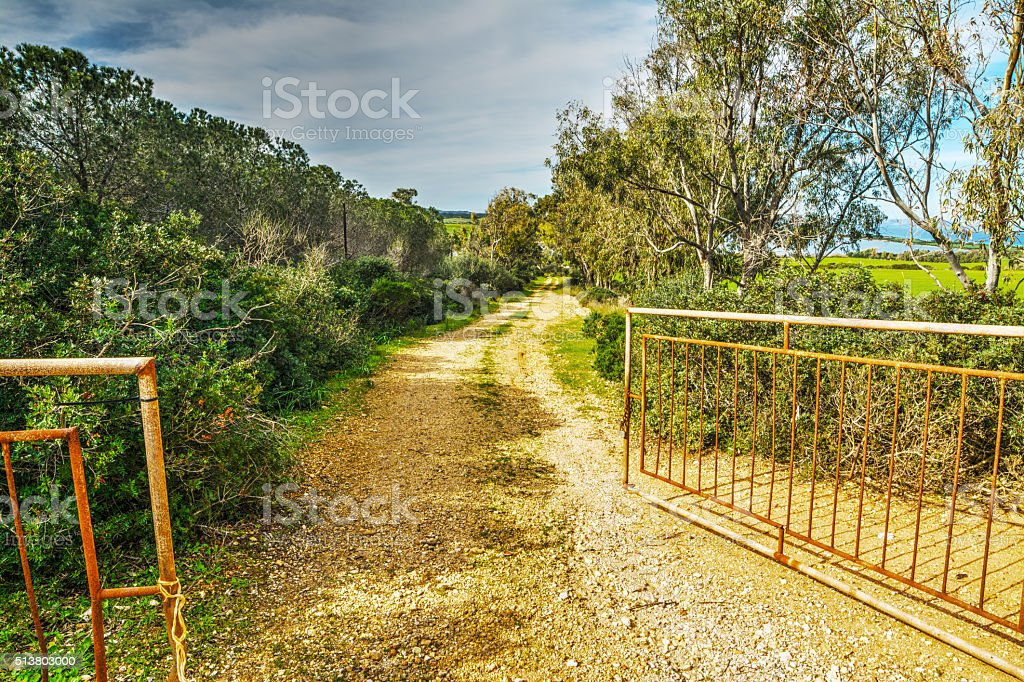 open gate in the countryside stock photo