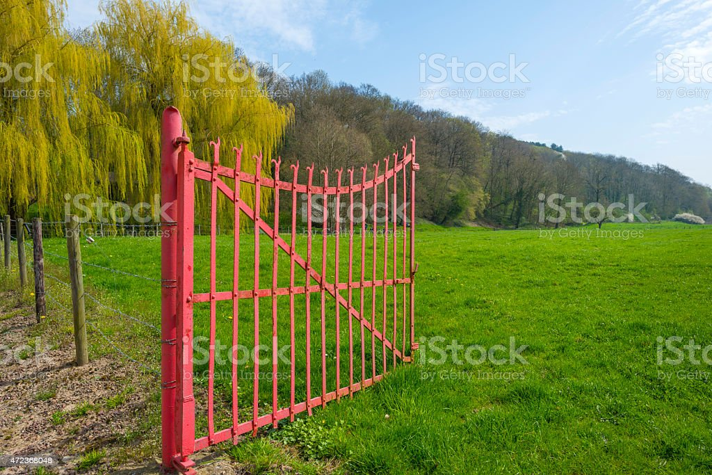 Open gate to a green field in spring stock photo