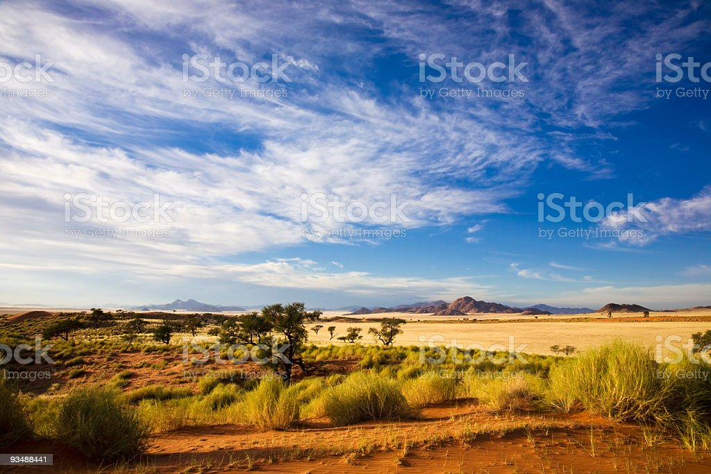 Open grassland Morgens in der Wueste stock photo