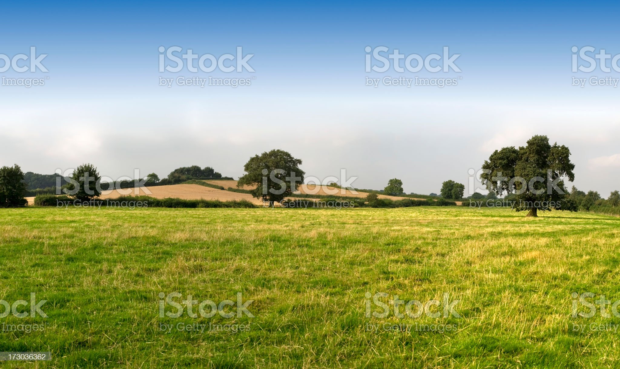 Open green field with hills and blue sky royalty-free stock photo