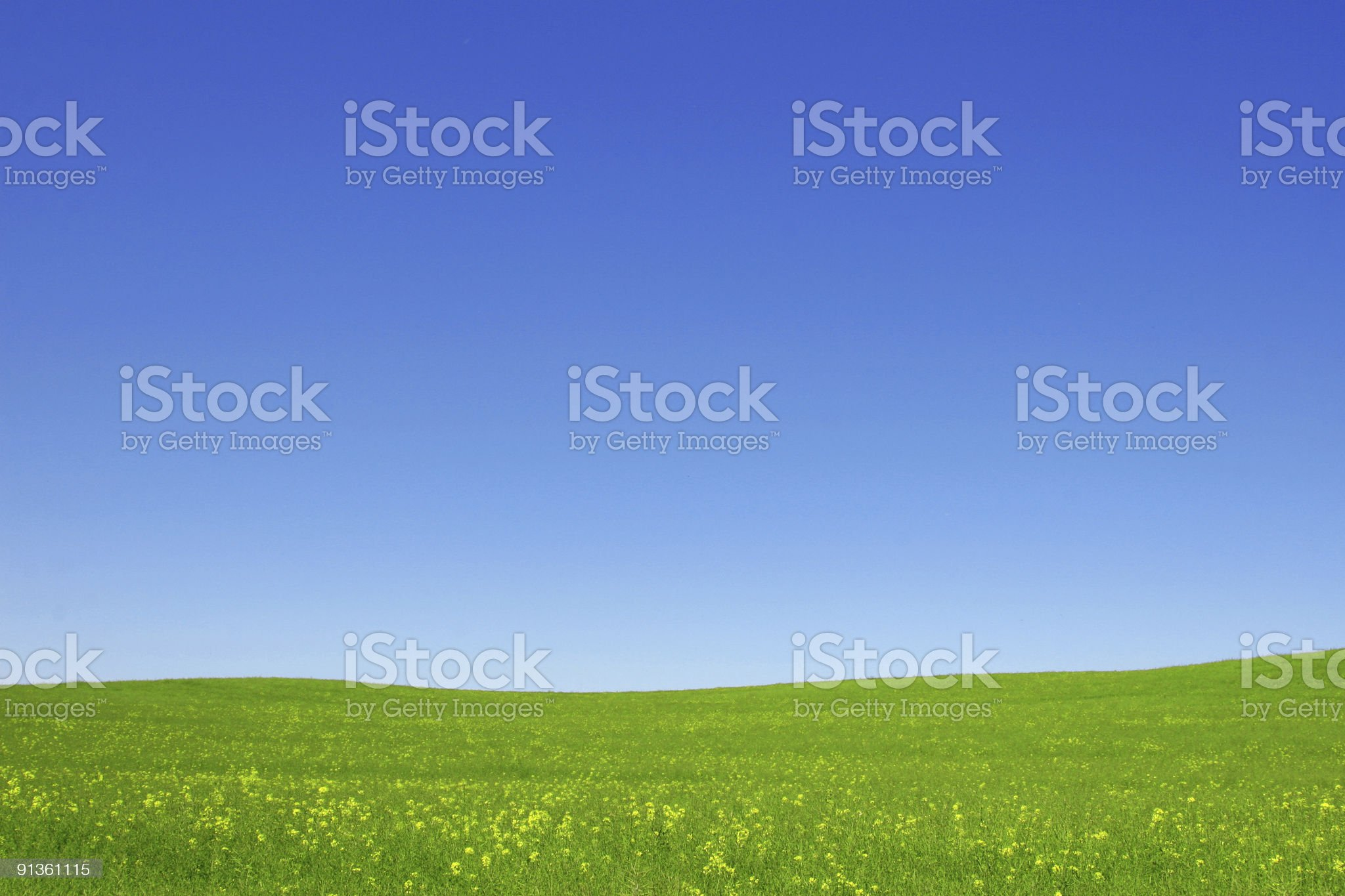 Open green fields and blue sky royalty-free stock photo