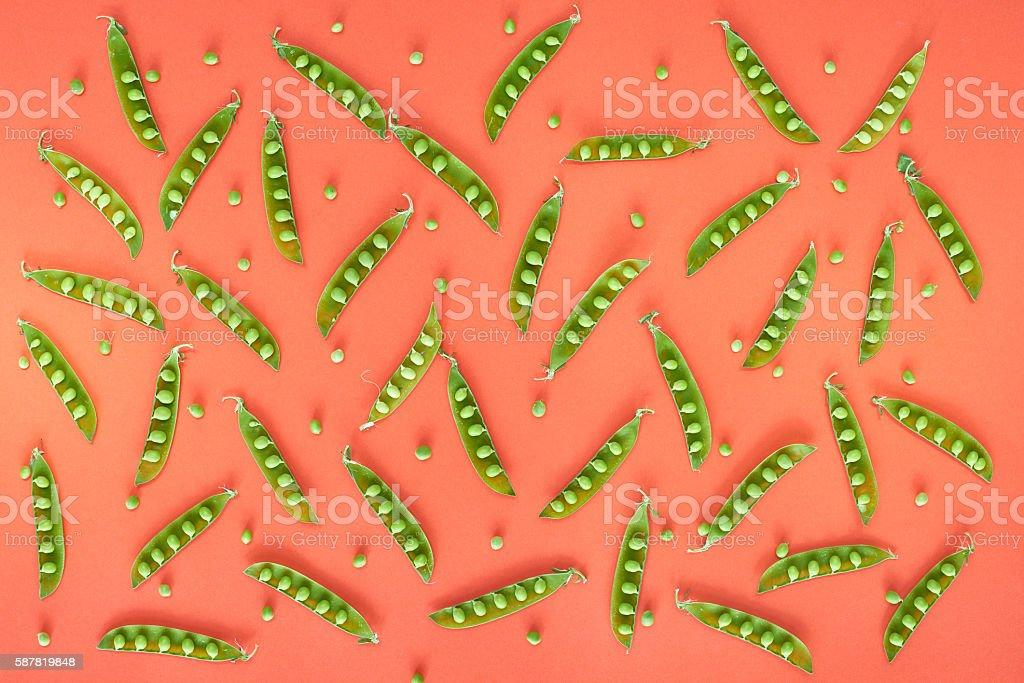 Open green pea pods stock photo