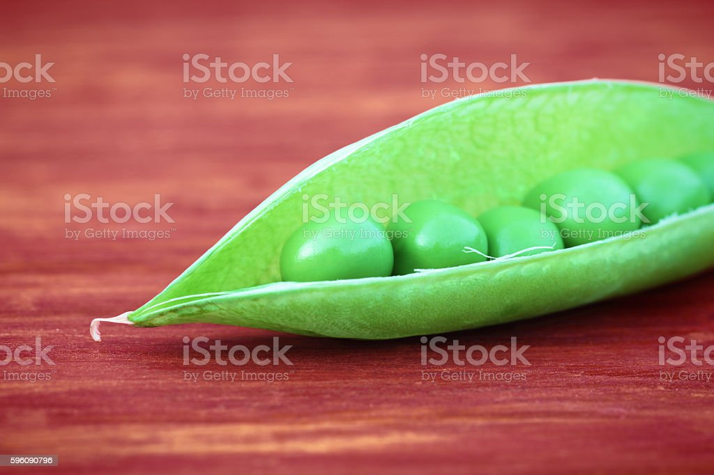 Open green pod of pea stock photo