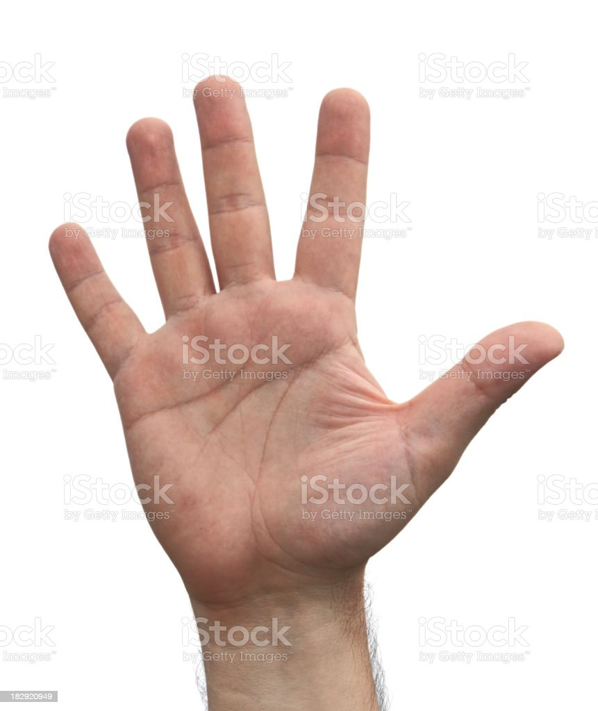 Open Hand   ( Isolated ) royalty-free stock photo