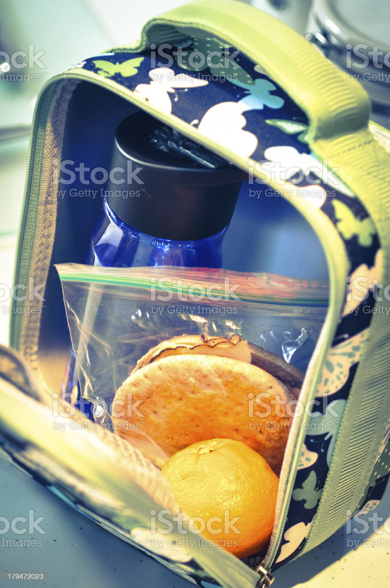 Open lunchbox royalty-free stock photo